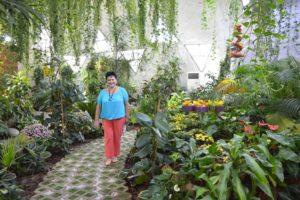 В помещениях сада поддерживается оптимальное соотношение температуры и влажности для хрупких насекомых, продолжительность жизни которых - от 14 до 26 дней.